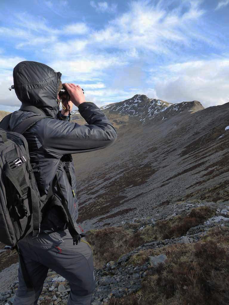 mull, isle of mull, nature scotland, mull wildlife, mountains,