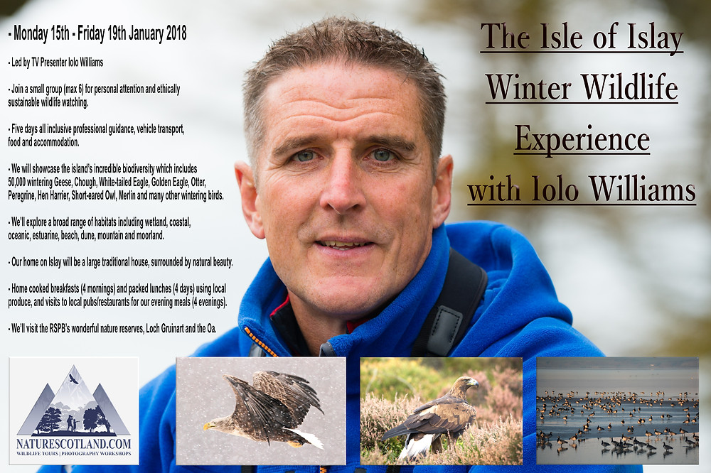 Iolo WIlliams, Isle of Islay, Islay, Hebrides, Wildlife Tours, Holidays, Wildlfie Holidays,