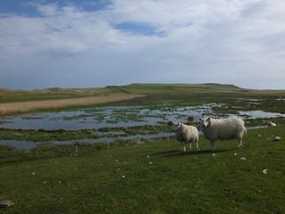 North West Scotland part 7