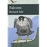 Falcons by Richard Sale