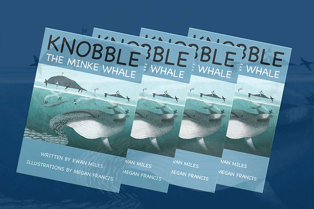 KnobblePromoNSwebsite.jpg
