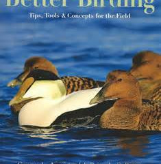 Better Birding- Tips, tools & concepts for the field  by George L Armistead & Brian L Sulliv