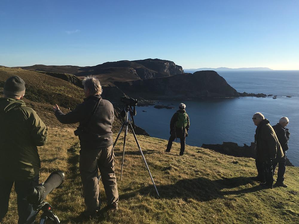 Islay, Wildlife, Nature Scotland,