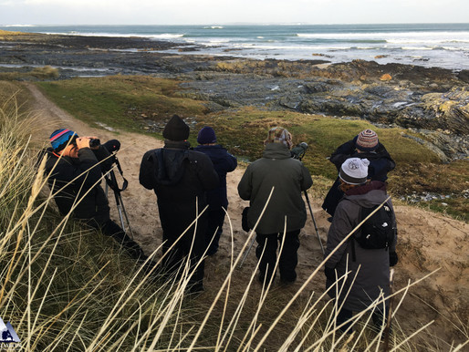 Isle of Islay with Iolo Williams - Day 3