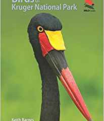 Birds of Kruger National Park by Keith Barnes and Ken Behrens