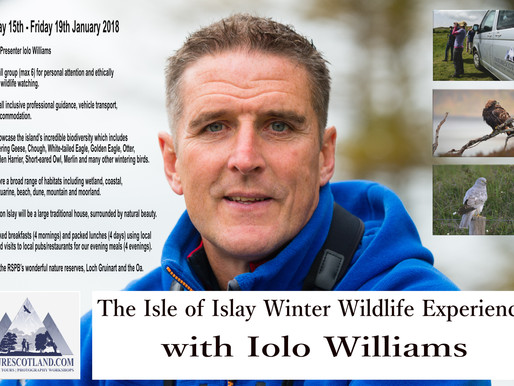 Join Iolo Williams on Islay this Winter!