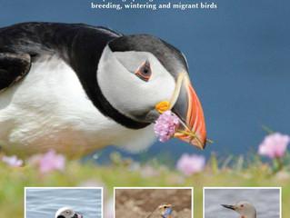 Discover Shetland's Birds by Paul Harvey & Rebecca Nason