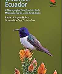 Wildlife of Ecuador by Andres Vasquez Naboa