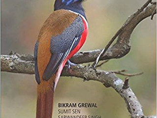 A photographic Field Guide to the Birds of India, Pakistan, Nepal, Bhutan, Sri Lanka and Bangladesh