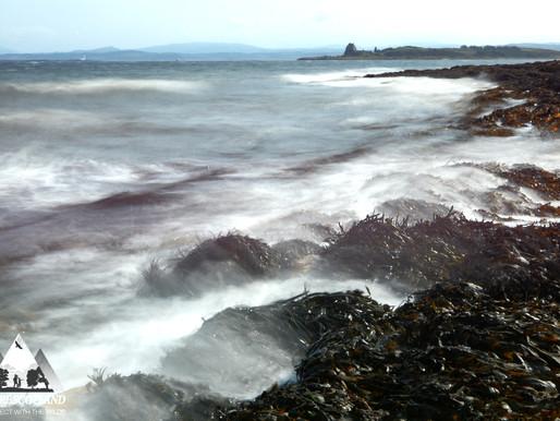 East Coast Surge...