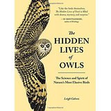 The Hidden lives of Owls by Leigh Calvez