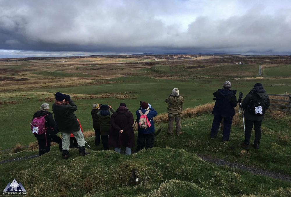 islay, isle of islay, wildlife islay, nature scotland, nature tourism