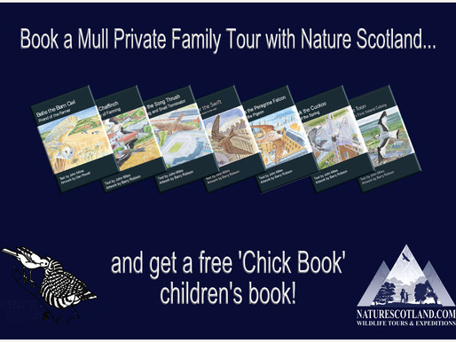 a free children's book on every family tour...