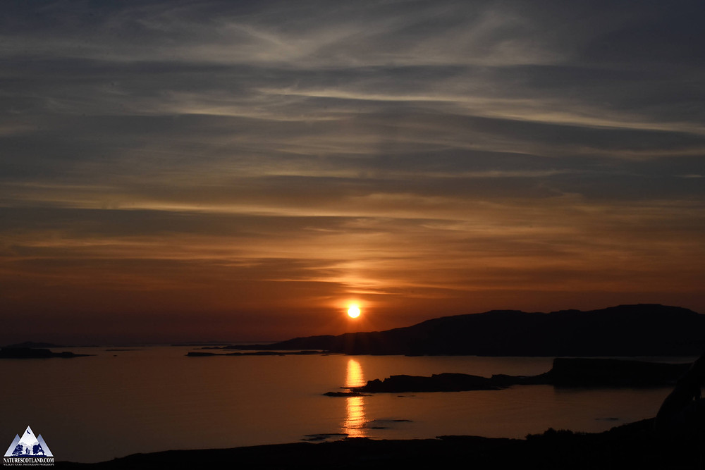 Mull, Isle of Mull, Nature Scotland, Wildlife Mull,