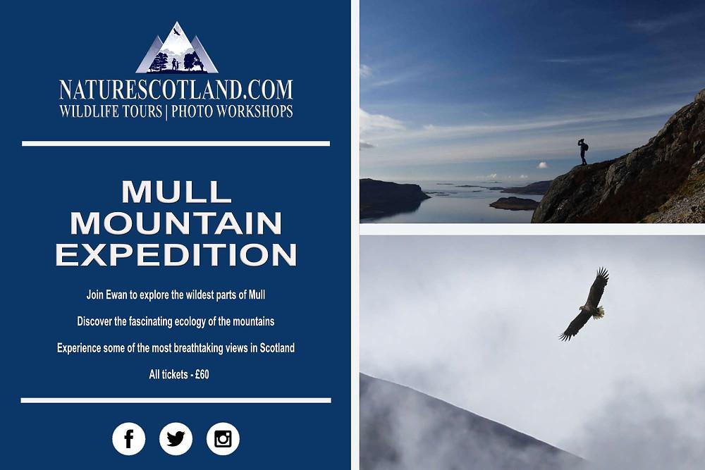 Mull Mountains, Mull, Isle of Mull, Nature Scotland,