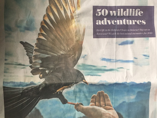 The Telegraph top 50 Wildlife Adventures...