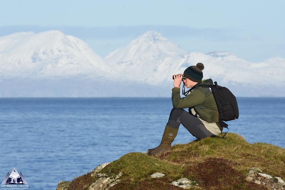 Mull, Isle of Mull, Ewan Miles, Nature Scotland, Seabirds, Seabirds Census,