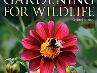 Gardening for Wildlife [new edition] by Adrian Thomas