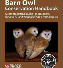 Barn Owl – conservation hand book