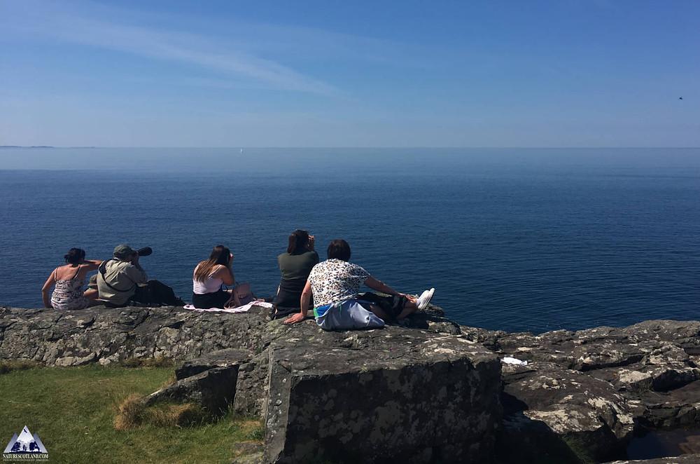 Ardnamurchan, Mull, Isle of Mull, Nature Scotland,