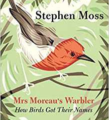 Mrs Moreau's Warbler – The only Woman in Britain to have a bird named after her
