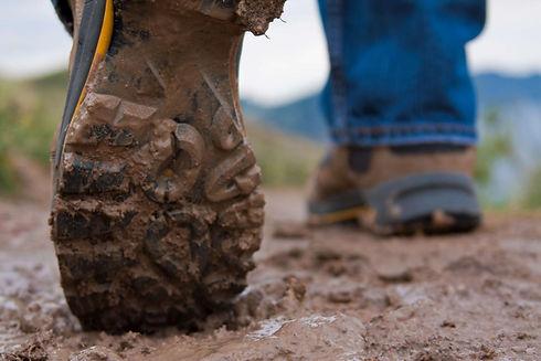 Walking_website.jpg
