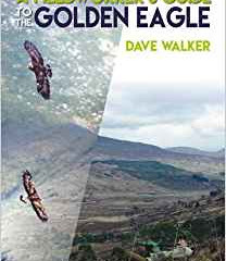A Fieldworker's Guide to the Golden Eagle by Dave Walker