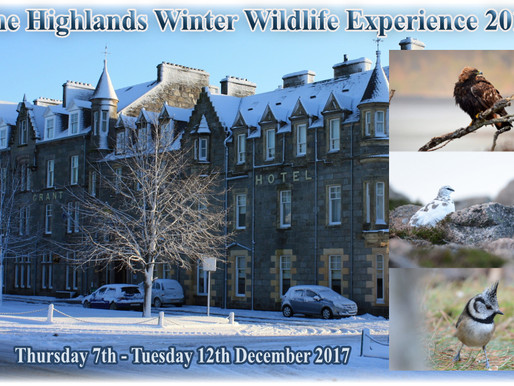 Highlands Winter Wildlife Experience 2017!