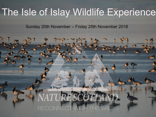 3 Spaces left on our Islay trip!