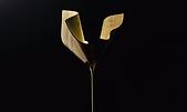Video Bloom by COZÌ