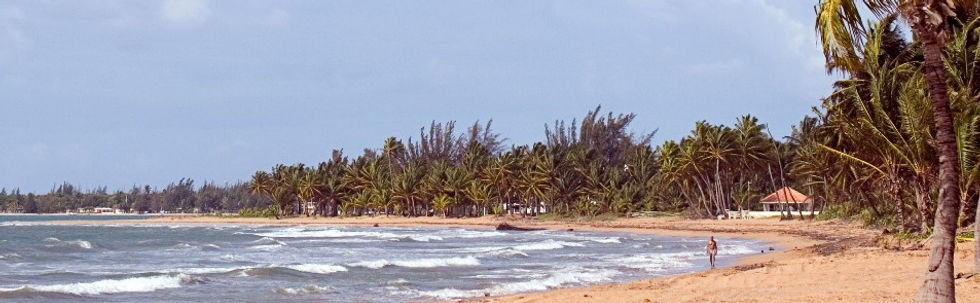 Ocean waves on a tropical beach inspire the work of David Smith, owner of Ocean Breeze Copywriting.