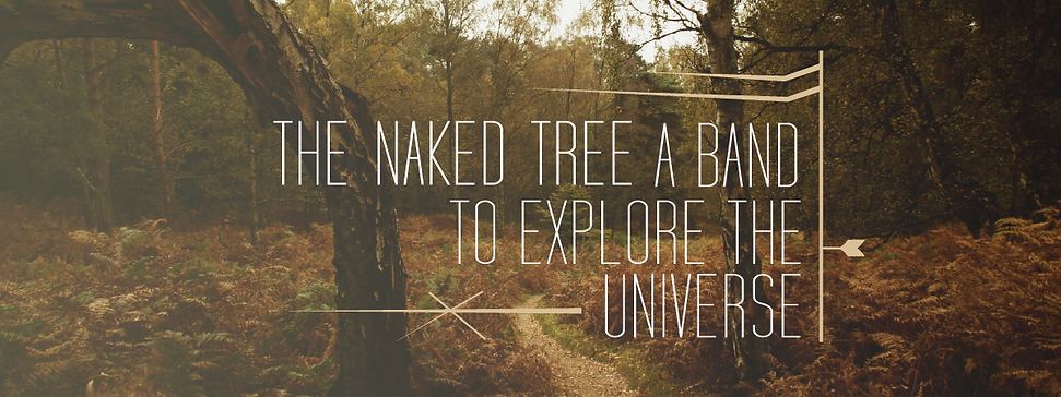 The Naked Tree, Ty Tek, Ty Tekavec, Universe Music, Meditation Music, Indie Industrial Music