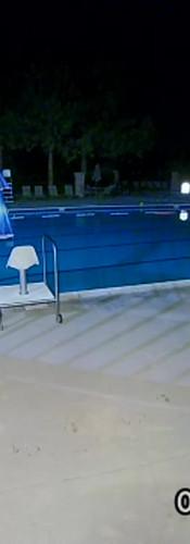 CPN Bear at Pool