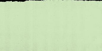 TX green rip top.png