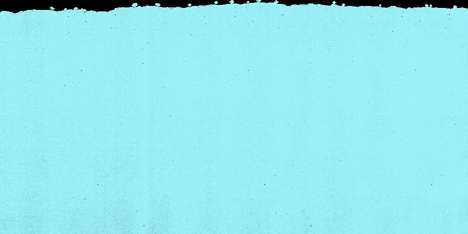TX blue rip top.png