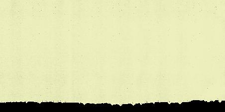 TX yellow rip bottom.png