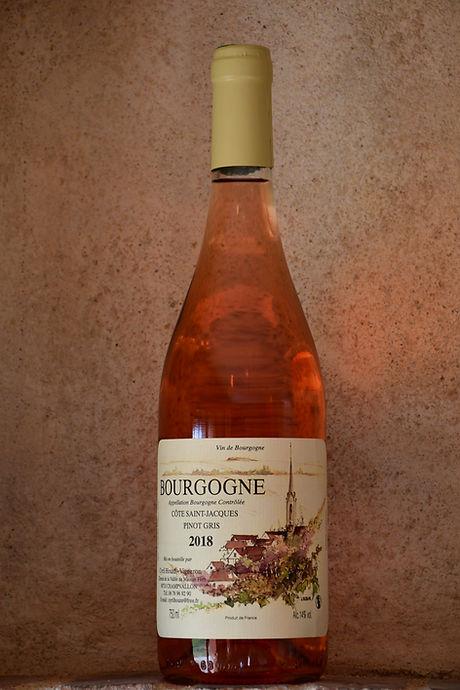 Pinot gris Côte Saint Jacques