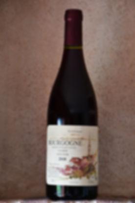 Pinot noir Colmier