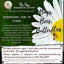 Bugs Bees and Butterflies (1).jpg