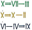 STEMKIDS-wyrazenia-rzymskie.png