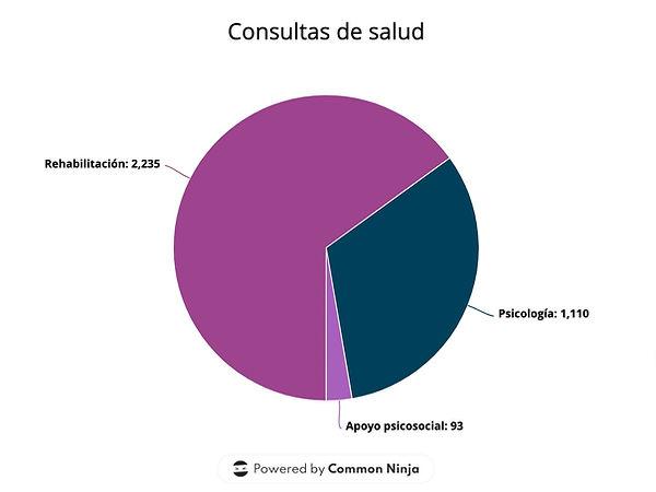 Grafica de consultas de salud. Rehabilitación: 2235, Psicología: 1110, Apoyo psicosocial: 93
