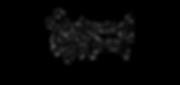 s&w logo.png