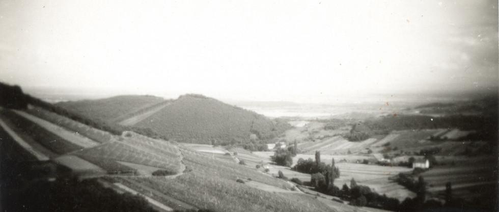 vue sur la plaine.jpg