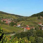 Bernardvillé vue de Reichsfeld