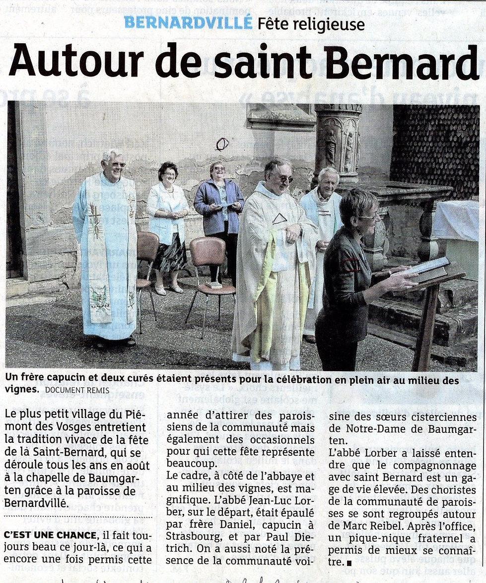 Saint Bernard218 (Copier).jpg