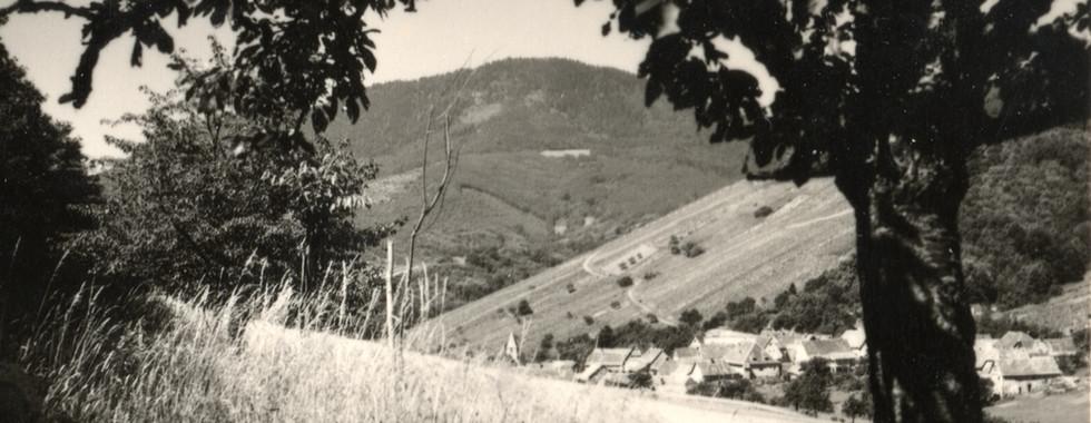 Vue sur l'Ungersberg