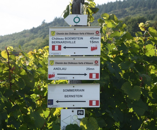 Sentiers de randonnées Bernardvillé