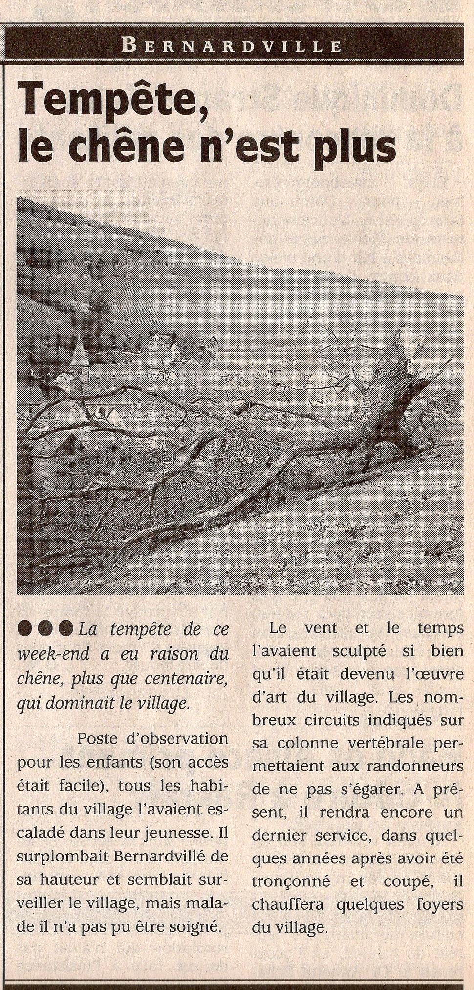 Le chêne n'est plus 2002 Bernardvillé (C
