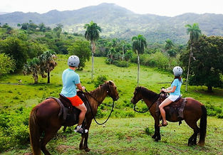 Amber Cove Horseback Riding