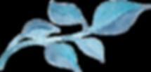 water color leaf NO BACK_edited_edited.p